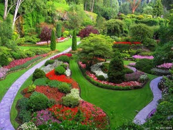 3-cuidados paisagismo