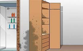 Remover Mofo de Dentro do Armário