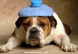 Dores de cabeça podem ser sinais de doenças graves 2