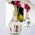 Garrafas de vidro na decoração 3