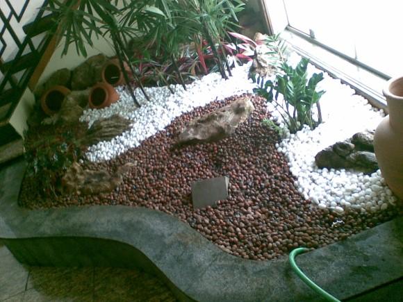 Montar um jardim de inverno 004