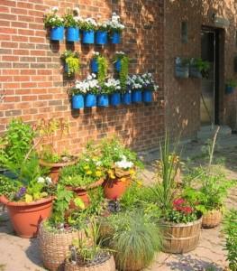 Montar um jardim vertical 001