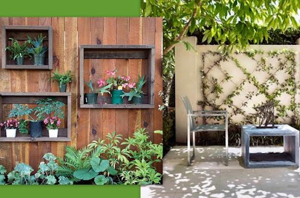 Montar um jardim vertical11