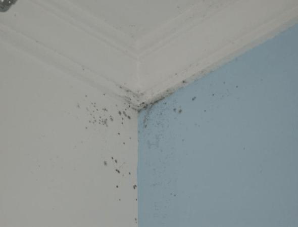 2-Como evitar mancha branca em paredes coloridas