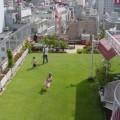 Como-fazer-um-jardim-na-laje-010