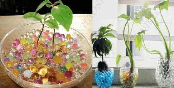 9-Bolas coloridas para decorar a casa
