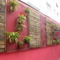 Que cor usar em muro com plantas 002