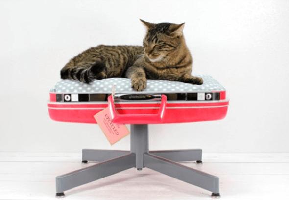 10-Como_criar_uma_cama_para_gatos_