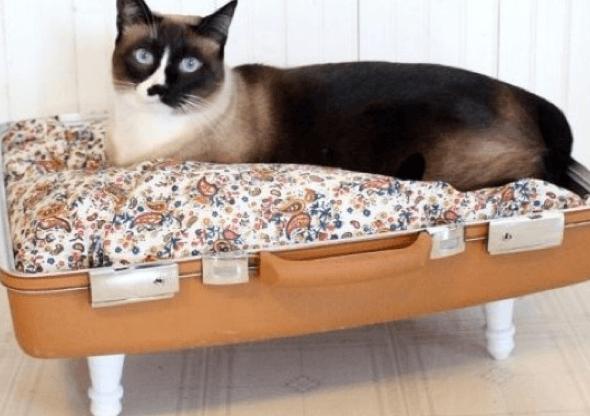 4-Como_criar_uma_cama_para_gatos_