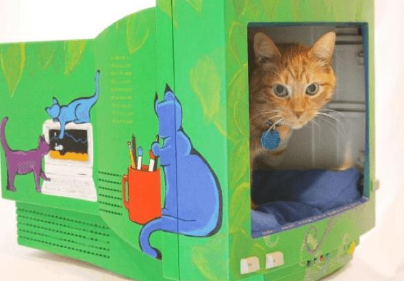 8-Como_criar_uma_cama_para_gatos_