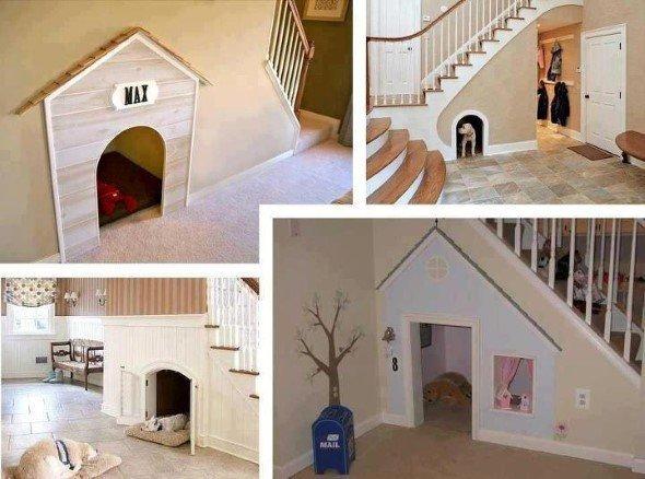 Arquitetura-moderna-para-cachorros-002