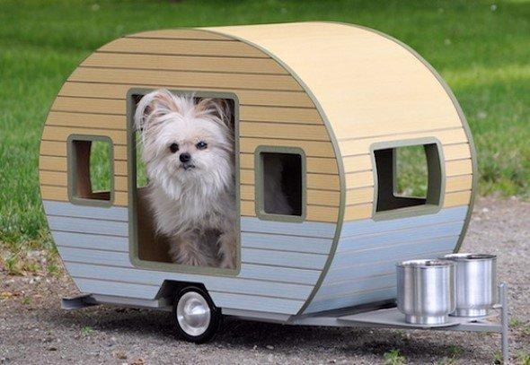Arquitetura-moderna-para-cachorros-003