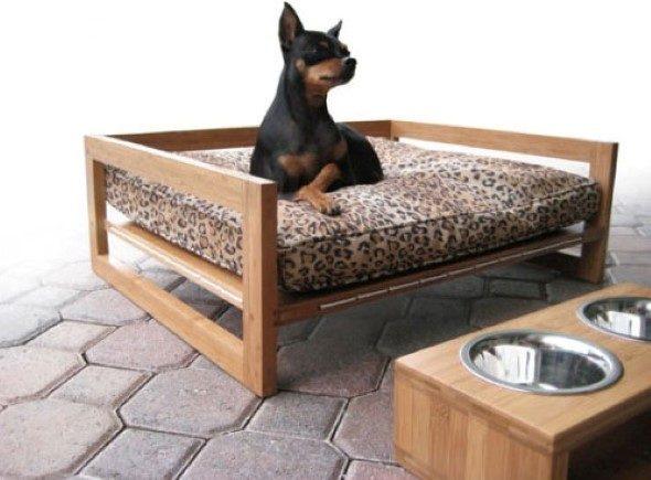 Arquitetura-moderna-para-cachorros-009