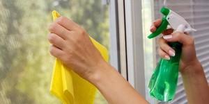4-Como limpar os vidros das janelas da melhor maneira