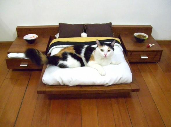 Móveis criativos para quem tem gatos 012