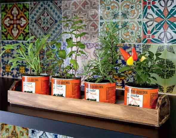 Mini horta em casa 004