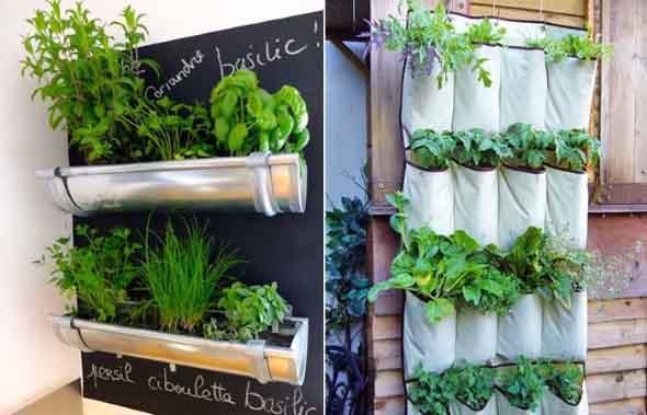 15 id ias para fazer mini horta em casa for Modelos de mini apartamentos