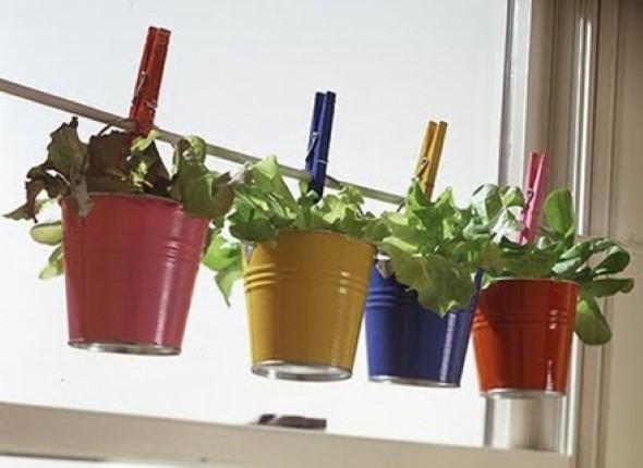 Mini horta em casa 010