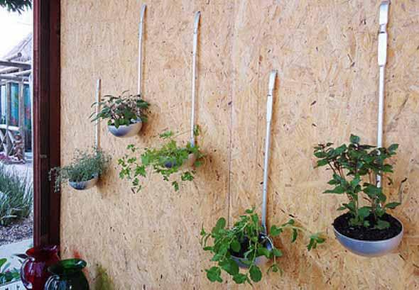 Mini horta em casa 011