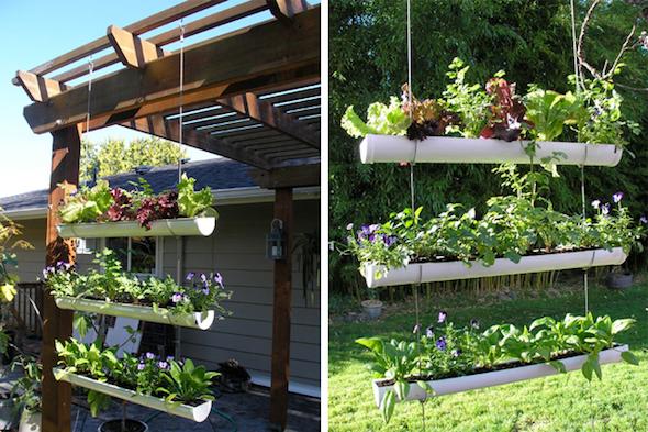 horta em casa 1