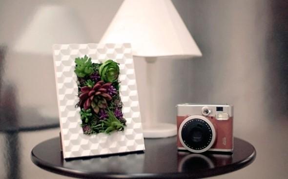 fazer-quadros-de-plantas-para-decorar-002