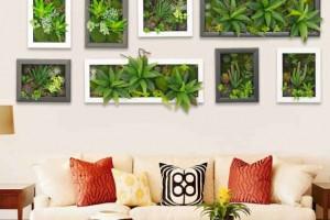 fazer-quadros-de-plantas-para-decorar-007
