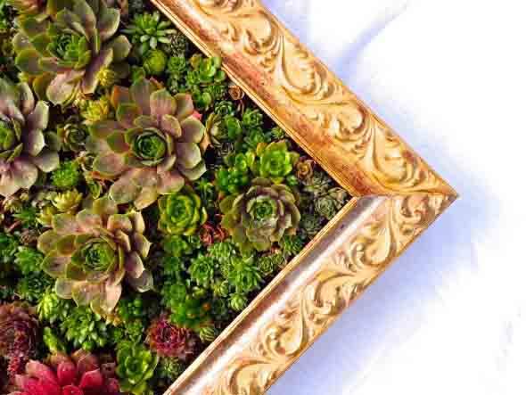 fazer-quadros-de-plantas-para-decorar-011