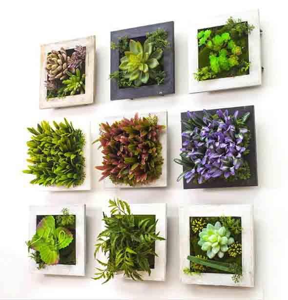 Fazer quadros vivo de plantas para decorar for Casas decoradas con plantas naturales