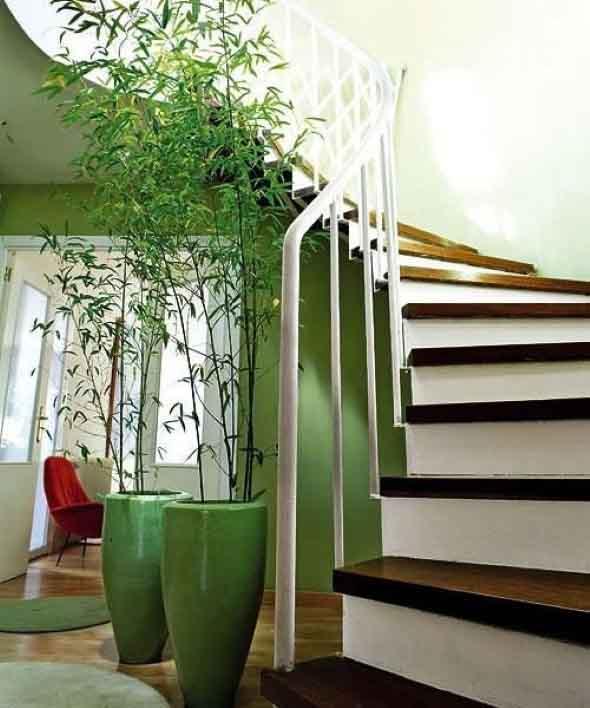 Enfeite sua casa com o charme do bambu 017