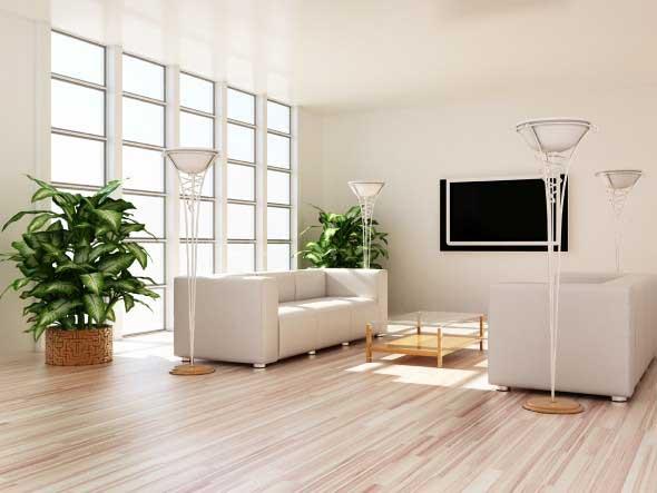 Onde colocar plantas dentro de casa 003
