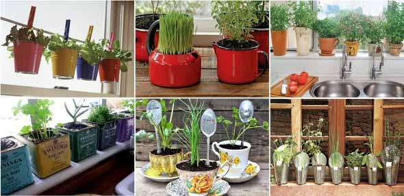 Vasinhos de flores e plantas para enfeitar a casa 003