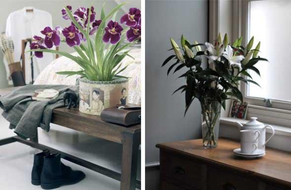 Vasinhos de flores e plantas para enfeitar a casa 004