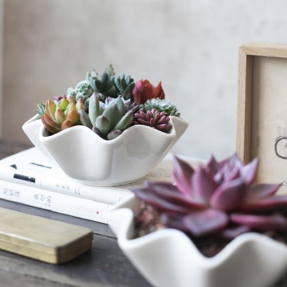 Vasinhos de flores e plantas para enfeitar a casa 019