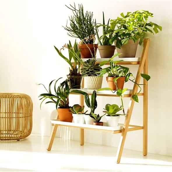 Prateleiras para plantas uma forma charmosa de ter - Estantes para plantas ...