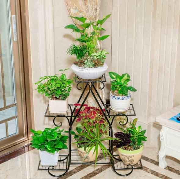 Prateleiras para plantas 015