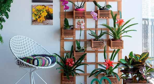 Jardim vertical com treliças pela casa 002