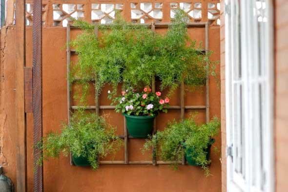 Jardim vertical com treliças pela casa 003