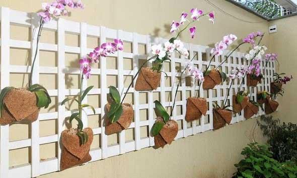 Jardim vertical com treliças pela casa 015