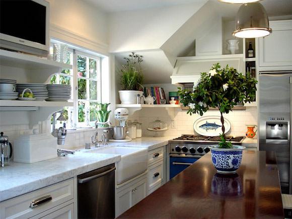 plantas na cozinha 4