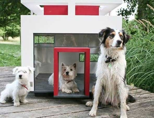 Casinhas de cachorro cheias de estilo 014