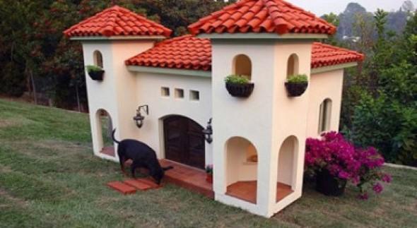 Casinhas de cachorro cheias de estilo 016