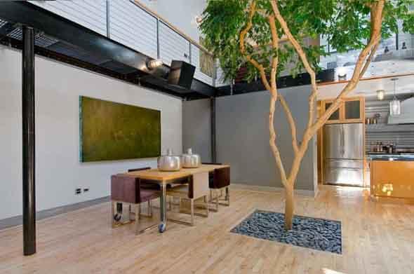 Árvore dentro de casa 002