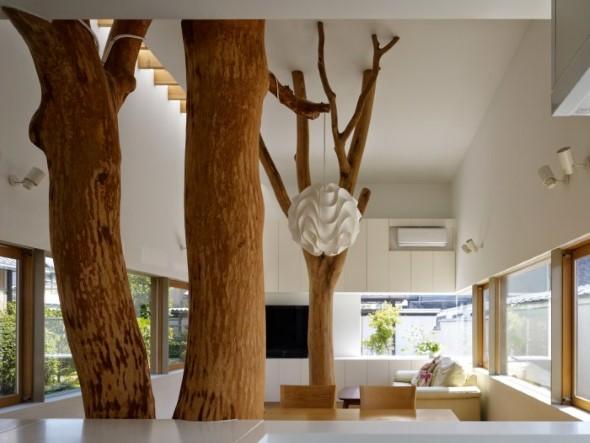 Árvore dentro de casa 003