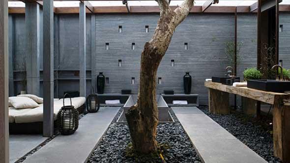 Árvore dentro de casa 017