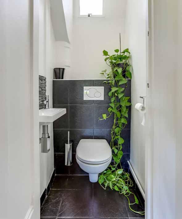 Dicas para ter plantas no banheiro 002