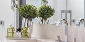 Dicas para ter plantas no banheiro 005