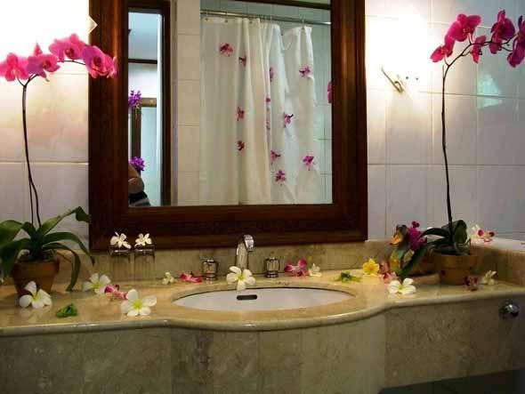 Dicas para ter plantas no banheiro 014