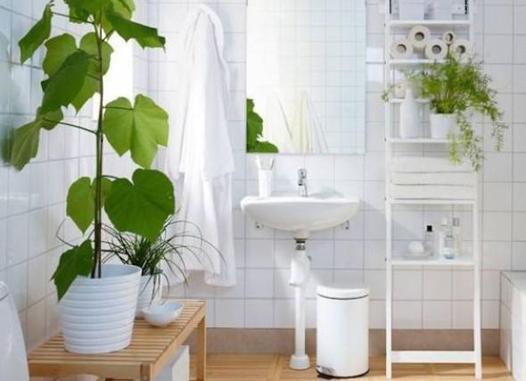 Dicas para ter plantas no banheiro 016