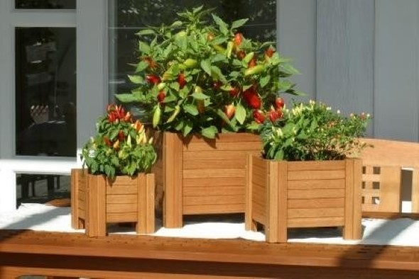 Vasos de plantas quadrados na decoração 011