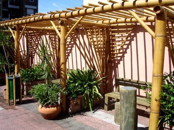 bambu 7